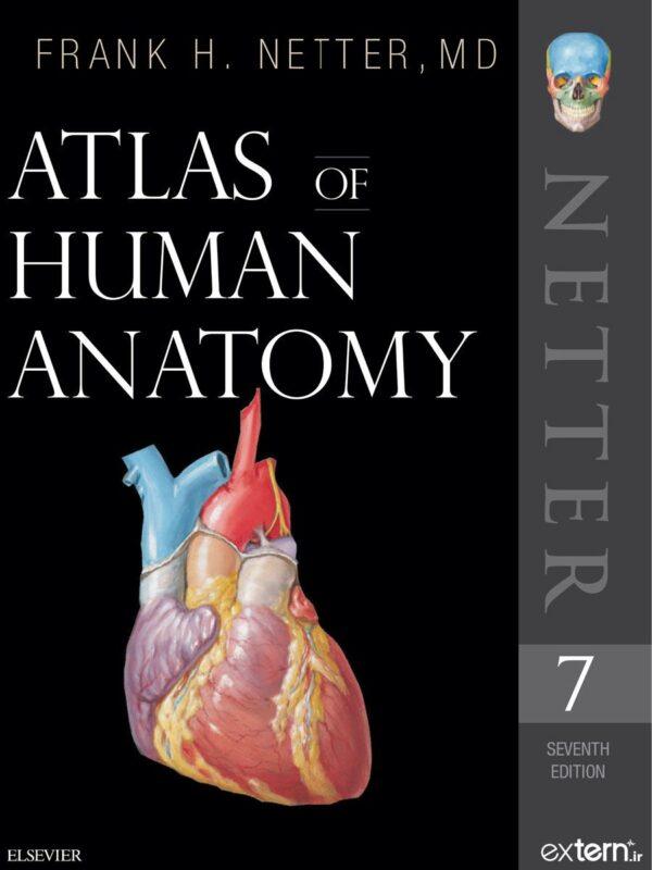 اطلس آناتومی بدن انسان نتر 2019 ویرایش 7